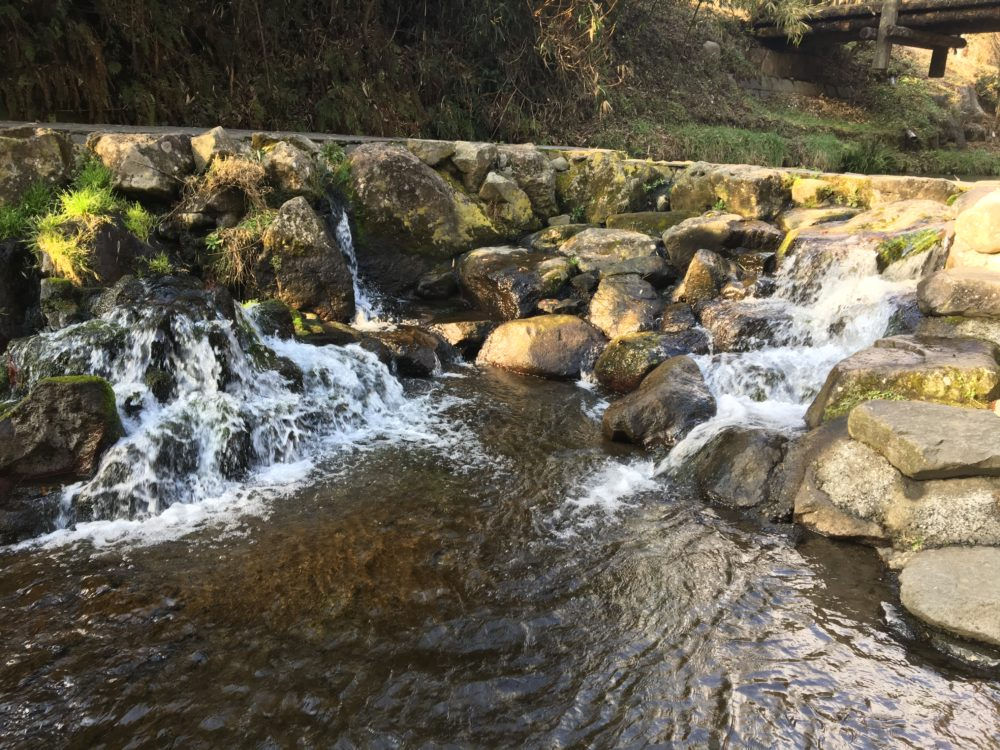 岩から水が出ている