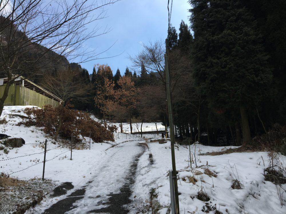古閑の滝遊歩道の坂道